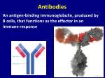 antibodies1