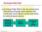 exchange rate risk1