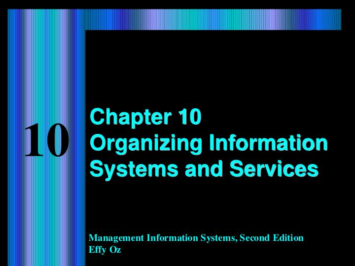 chapter 10 organizing information systems and services n.