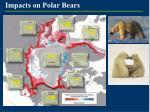 impacts on polar bears
