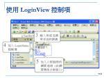 loginview4
