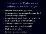 emergence of carbapenem resistant acinetobacter spp