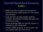 extended spectrum lactamases esbls1