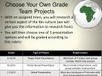 choose your own grade team projects