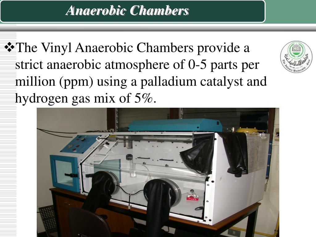Vinyl Anaerobic Chambers