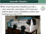 anaerobic chambers