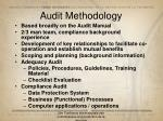 audit methodology
