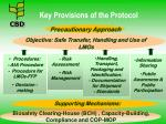 key provisions of the protocol