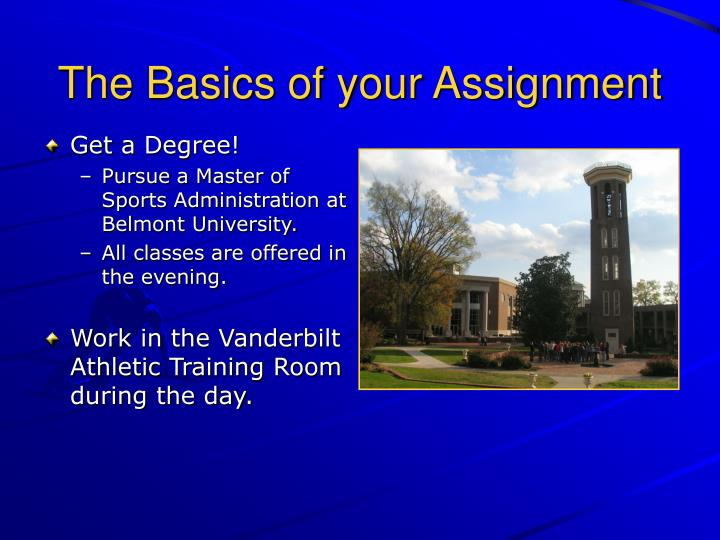 The Basics of your Assignment