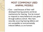 most commonly used animal models