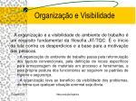 organiza o e visibilidade