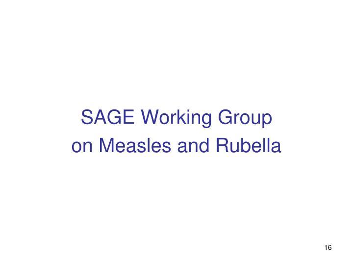 SAGE Working Group