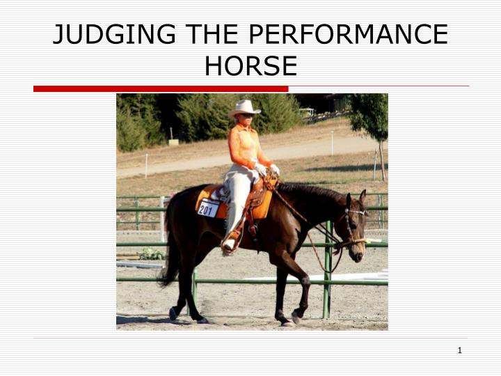 judging the performance horse n.