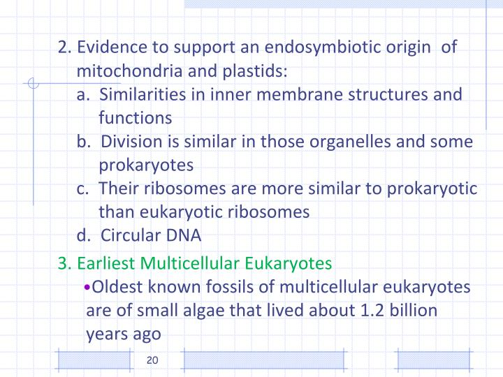 2. Evidence to support an endosymbiotic origin 	of 	mitochondria and plastids: