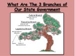 what are the 3 branches of our state government