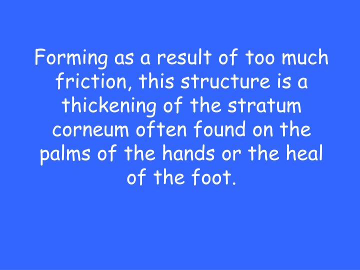 Forming as a result of too much friction, this structure is a thickening of the stratum corneum often found on the palms of the hands or the heal of the foot.