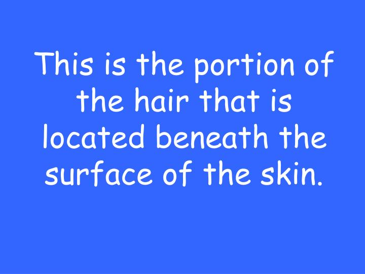 This is the portion of the hair that is located beneath the surface of the skin.