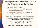 pricing options intrinsic value and the time value of the option