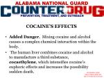 cocaine s effects