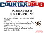 other meth observations