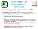 sd loopbaan en beloningsbeleid observaties1