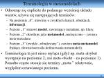 terminologia w metamodelach