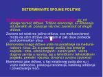 determinante spojne politik e2