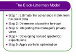 the black litterman model