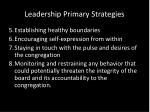 leadership primary strategies1