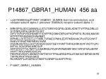 p14867 gbra1 human 456 aa