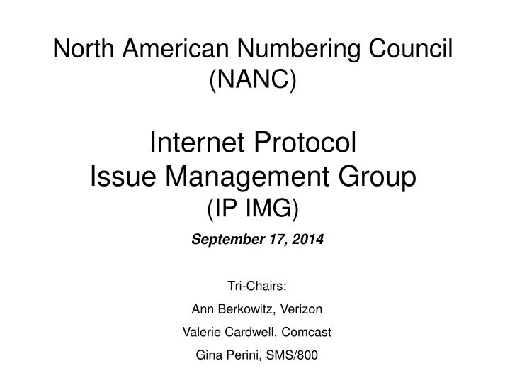 north american numbering council nanc internet protocol issue management group ip img n.