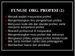 fungsi org p rofesi 1