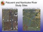 patuxent and nanticoke river study sites