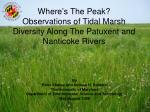 where s the peak observations of tidal marsh diversity along the patuxent and nanticoke rivers
