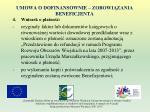 umowa o dofinansownie zobowi zania beneficjenta12