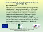 umowa o dofinansownie zobowi zania beneficjenta13