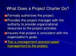 what does a project charter do