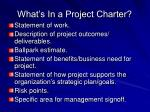 what s in a project charter
