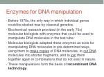 enzymes for dna manipulation