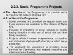 2 2 2 social programme projects2