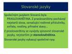 slovansk jazyky1