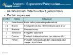 anatomi separators punctuation