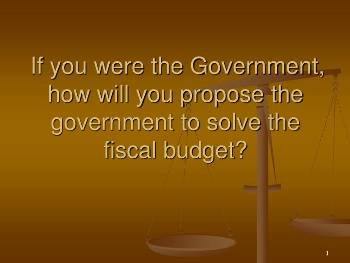 if you were the government how will you propose the government to solve the fiscal budget n.
