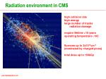 radiation environment in cms