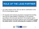 role of the lead partner1