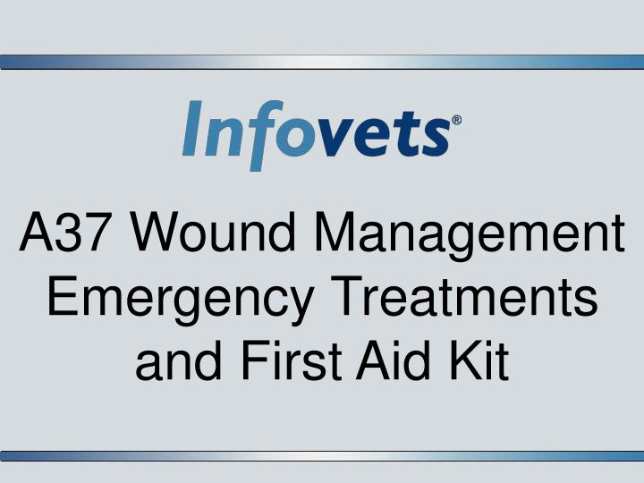 a37 wound management emergency treatments and first aid kit n.