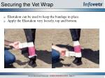 securing the vet wrap