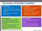 summary of entities audited