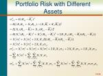 portfolio risk with different assets