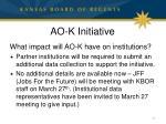 ao k initiative1